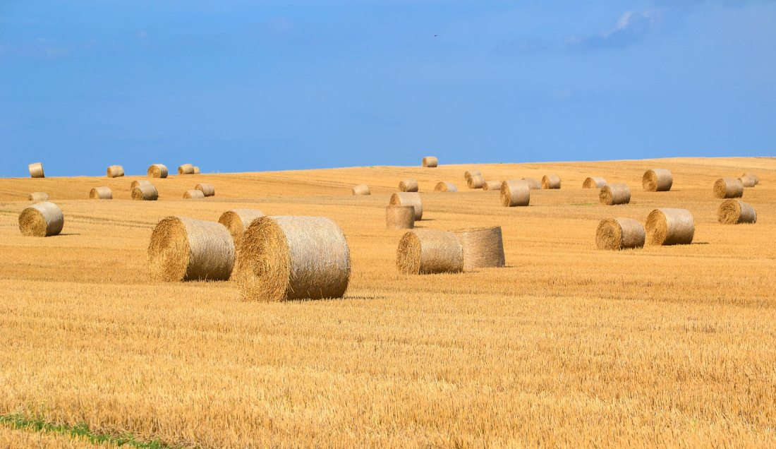 agriculture-arable-bale-289334
