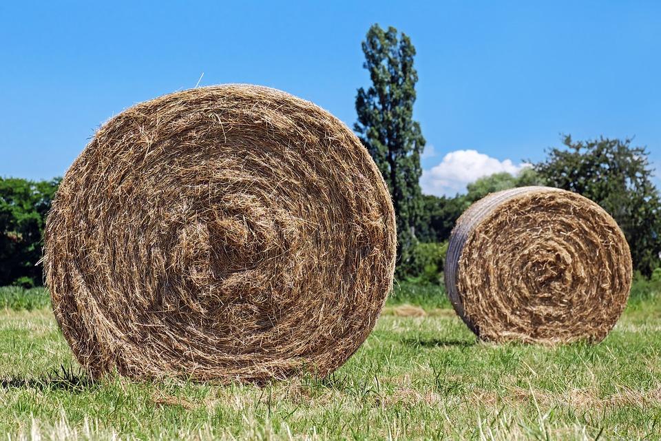hay-bales-1508813_960_720