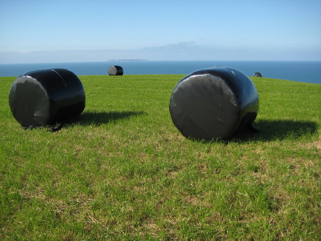 Silage bales near the sea